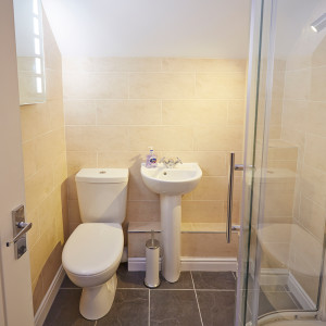 Ensuite with power shower
